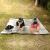 アウドアテンの両面にアルミニウムコーティングされた湿った空気防止パッドレジカマットカジュアルキャンプマットの中敷きが清洁な日よけシート200*200